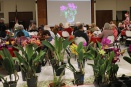 Monthly Meeting of the St. Augustine Orchid Society